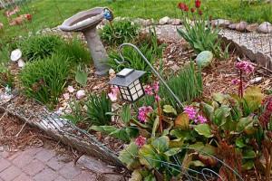 Backyard-Landscaping_stevendepolo