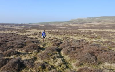 Great Asby limestone pavement, cairns and an OS trig point at the Knott.